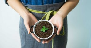 Easy eco-friendly tips for a green kitchen